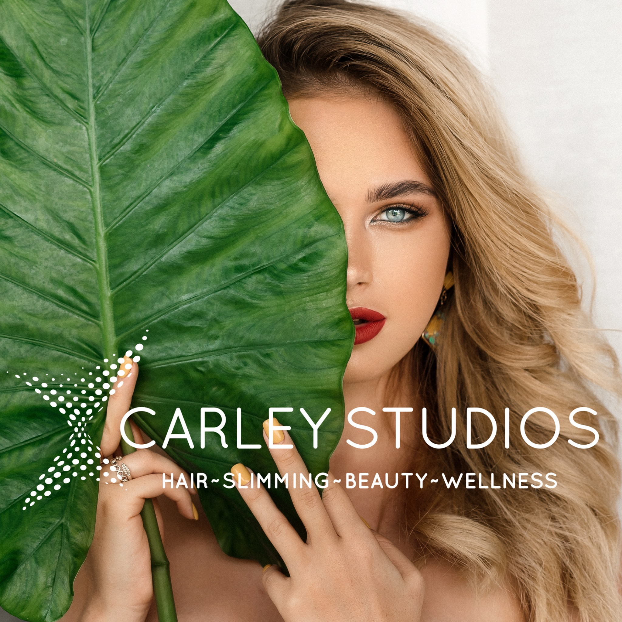 Carley Studios